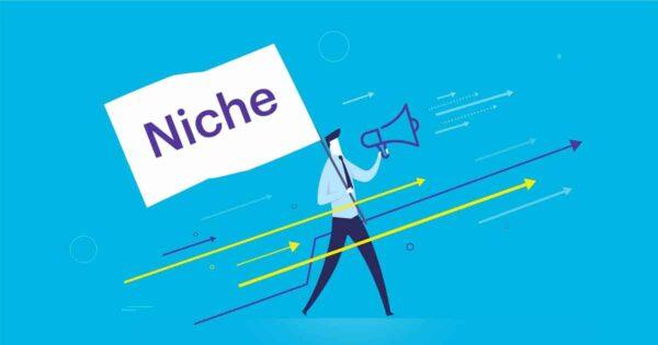 Niche Market คือ